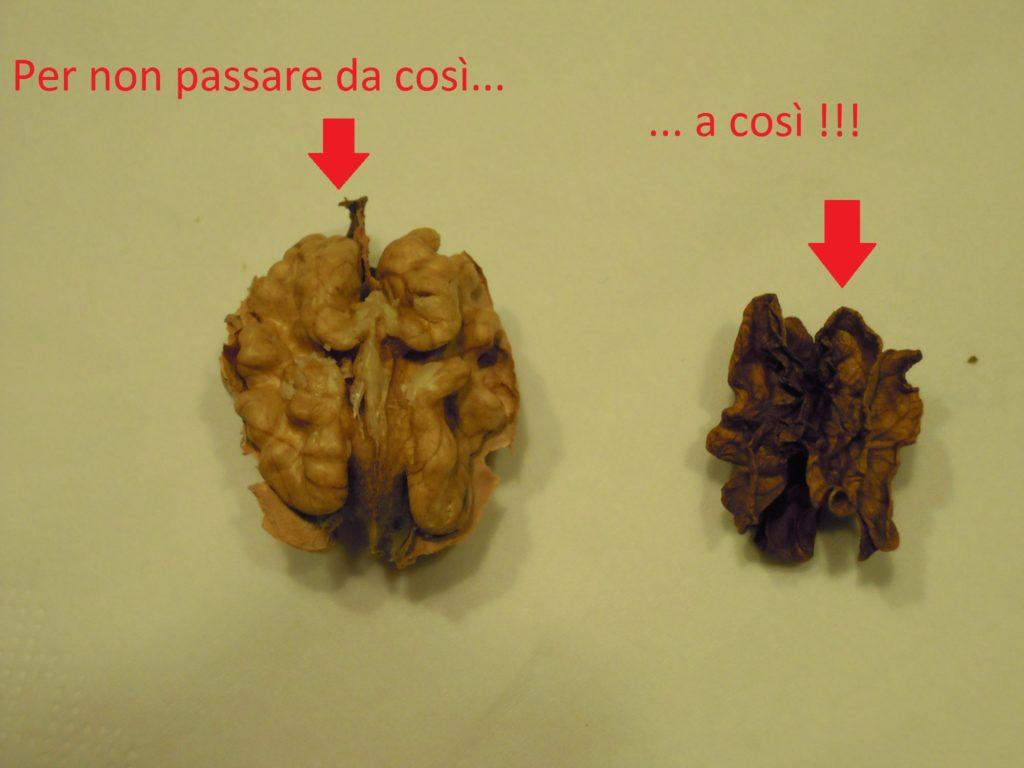 la nostra mente